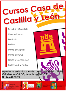 Cartel_CyL_CURSOS